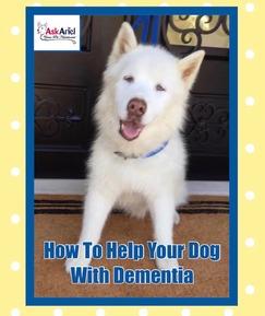 Holistic Treatment for Dog Dementia | Dog Dementia Supplements